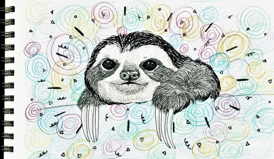 sloth .jpg